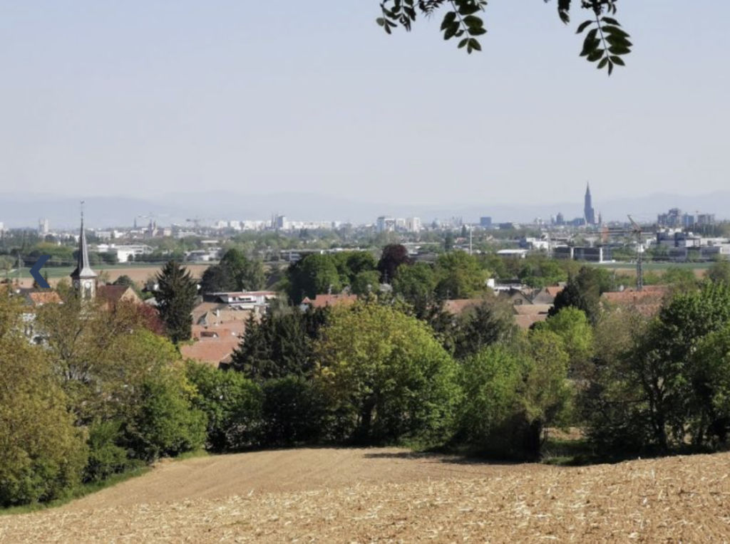 Niederhausbergen